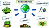 Provide environmentally, culturally, economically and socially sustainable food