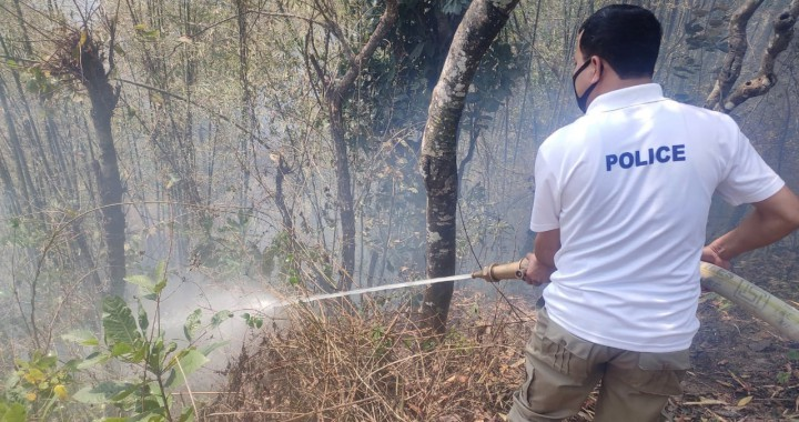 Effort on to contain forest fires in South Sikkim