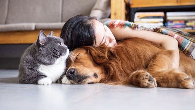 How pets help relieve stress